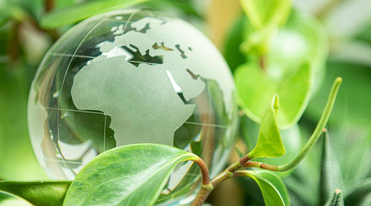 Planeta tierra de color verde creciendo entre plantas