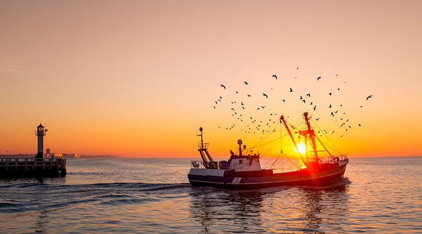 Seguros para barcos pesqueros